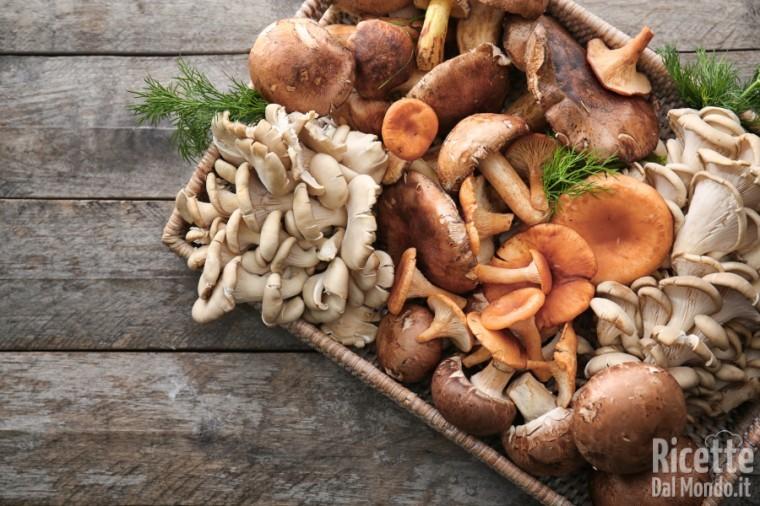 Le 10 Varieta Di Funghi Piu Usate In Cucina Ricettedalmondo It